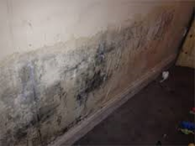 Excess moisture leads – on almost all indoor materials – to growth of microbes such as molds, fungi and bacteria, which subsequently emit spores, cells, fragments and volatile organic compounds into the indoor air